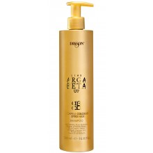 DIKSON ARGABETA UP COLOR Shampoo - Шампунь для окрашенных волос с кератином 500мл