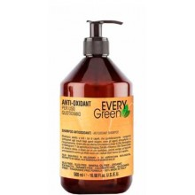 DIKSON EVERYGreen ANTI-OXIDANT Shampoo - Шампунь антиоксидант 500мл
