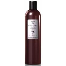 EGOMANIA Richair Men`s Pro Shampoo-gel 2 in 1 - Шампунь-гель 2 в 1 мужской 400мл