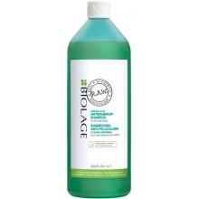MATRIX BIOLAGE R.A.W. SCALP CARE Antidandruff Shampoo - Шампунь против перхоти с экстрактом розмарина и коры ивы 1000мл