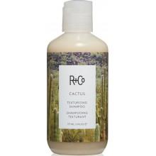R+Co CACTUS Texturizing Shampoo - КАКТУС Шампунь для волос Текстурирующий 177мл