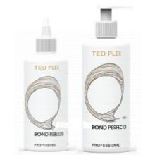 TEOTEMA TEO PLEX - Набор Восстановление и защита во время процедур (шаг1 + шаг2 + мерный стаканчик), 250 + 500мл